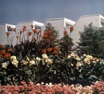 Tarble Arts Center Landscape by University Archives