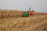 Farley Ear Corn Festival Harvest by Ben Halpern