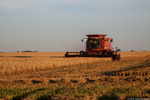 Cresap Farm Oat Harvest and Straw Baling