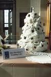 Award Winner: Dean's Choice Gold Medal: Miss Havisham's Bride Cake by Ellen Corrigan