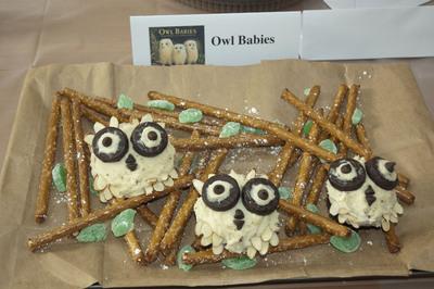 Best In Show: Children's Book Theme: Owl Babies