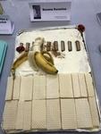 """Entry: """"Banana Karenina,"""" by Jana Aydt by Beth Heldebrandt"""