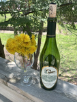 """Dandelion Wine"": Based on the book ""Dandelion Wine,"" by Ray Bradbury by Michele McDaniel and Ryan McDaniel"