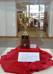 Quidditch Cup by Sign Appeal and Chelsea Duncan
