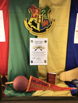 Quidditch Exhibit with Flyer