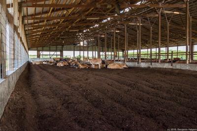 Kilgus Farm