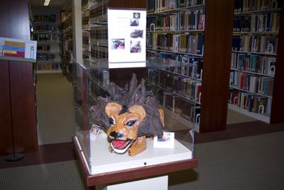 A Lion Coffin